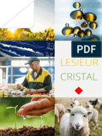 Lesieur Cristal - Consulting Project