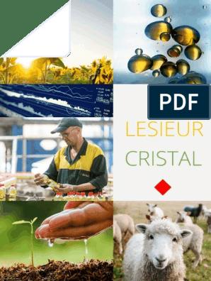 Lesieur Cristal Consulting Project Strategic Management
