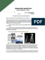 Elementoterapia Magnetica Entrega 4.docx