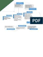 Mapa Conceptual Clinica