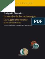 naoisike-ayuki-la-tumba-de-las-lucic3a9rnagas.pdf