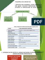 Inmunohistoquimica Cancer de Pulmon