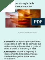 Psicopatologiadelapercepcin 150305153214 Conversion Gate01