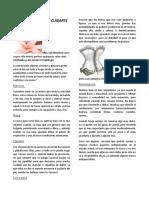 TIPS.docx