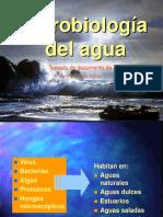 Microbiologia Del_agua 02062017