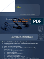 lecture2-NORMAL  FLORA-updated.ppt