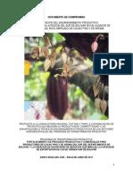 Encadenamiento Cacao Sur de Bolivar