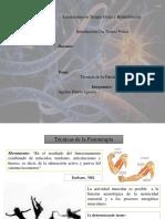 terapiatecnicasdelafisioterpia Romina.pptx