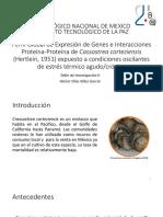 Perfil Global de Expresión de Genes e Interacciones 2