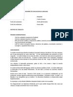 Informe de Evaluación Para Trabajar PLAN de INTERVENCIÓN