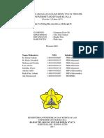 Laporan KKN Program Nurdin