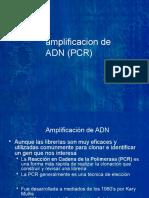 3.2_PCR