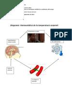 MIII - U1 - Actividad 1. Cómo se mantienen estables las condiciones del cuerpo-Andres Pineda.docx