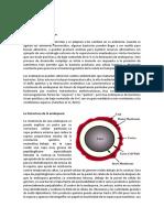 microbiologia 3