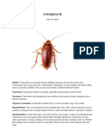 Cockroach.docx
