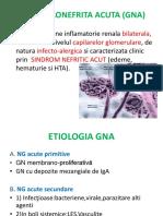 215789146-glomerulonefrita-acuta.pptx