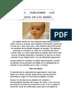 cómo funcionan los sentidos de los bebés