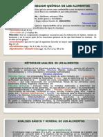 ALIMENTOS-RS.pptx