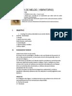 EXPERIENCIA DE MELDE inicio.docx