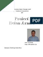 Ivan Daniel Proiect Beton