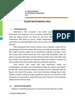 Panduan Praktikum Blok 3 (2016) - Elektroforesis Dna