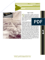 PSIQUE_tercer año_2.doc