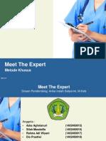 339539169-Meet-the-Expert.ppt