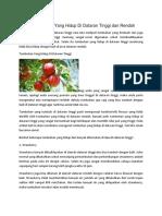 12 Tumbuhan Yang Hidup Di Dataran Tinggi dan Rendah.docx