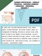 217754555-NEUROFISIOLOGIA-7.pptx
