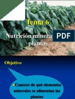 Nutricion_mineral.ppt
