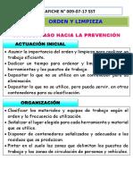 Afiche N°009-07-17 SST orden y limpieza