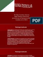 4. J. patologia testicular.pptx