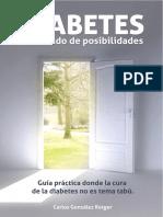 Diabetes_Un_mundo_de_Posibilidades.pdf