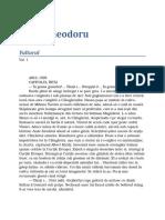 Radu Theodoru - Vulturul V1