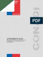 ley-indigena-19.253.pdf