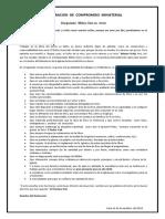 Declaracion Minesterial.docx