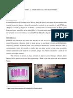 reporte del MIDE.docx