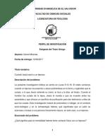 Perfil de investigación.docx