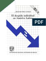 El-despido-individual-en-America-Latina-Carlos-Reinoso-Castillo.pdf