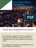 CONSUMO ENERGÉTICO HUMANO