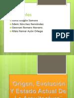Origen_Evolucion_Y_Estado_Actual_De_la_a.pptx
