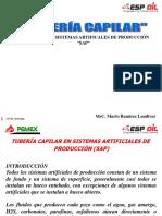 DIPLOMADO   Tuberia Capilar y SARTA DE VELOCIDAD Gas Pemex - 20-02-2008 - Revision.ppt