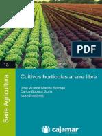 Cultivos Horticolas Al Aire Libre 2