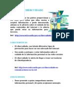 DOCUMENTO CIBERCUIDADO-CIBERDELITO