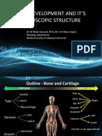 3.1 Bone Development and It's Microscopic Structure