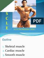 11. Skeletal Muscles