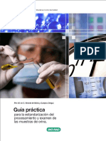 guiapractica_examen_orina.pdf