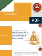 LECCIÓN 4.1 Animación Sociocultural