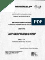 Proyecto Programa de Reforestacion en La Region Selva Lacandona Del Estado de Chiapas