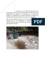 INFORME ecologia